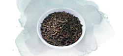 Schwarzen Tee im Hausbrandt Onlineshop kaufen